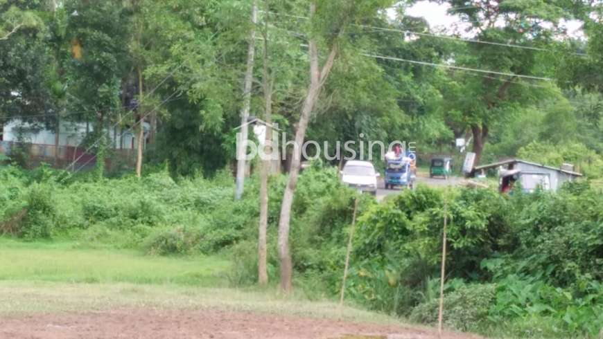 1400 Katha Land in sylhet District  Commercial Plot at Rashid Chattar