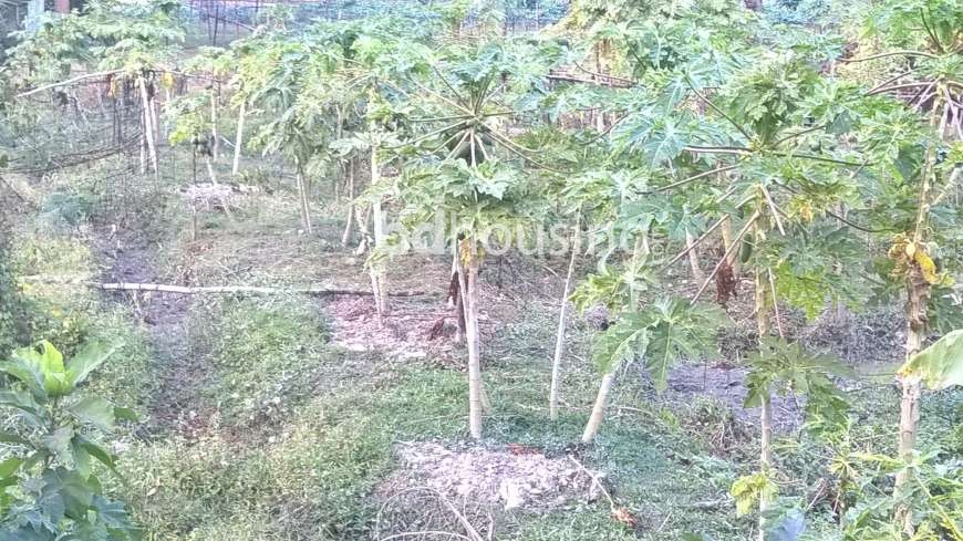 Redeem Purbachal City Commercial Plot at Purbachal