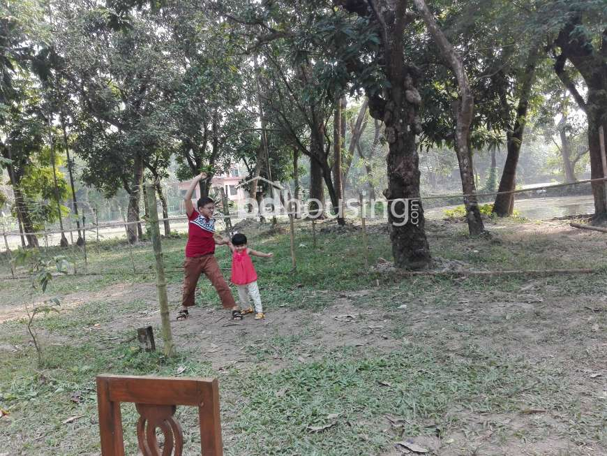 280 katha, Ready Agriculture/Farm Land for sale at Laksam
