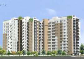 Navana Blooming Dale Apartment/Flats at Dhanmondi