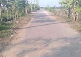7 katha, Ready  Farm Land for Sale at Demra Agriculture/Farm Land at